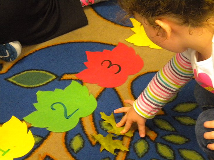 Leaf Counting