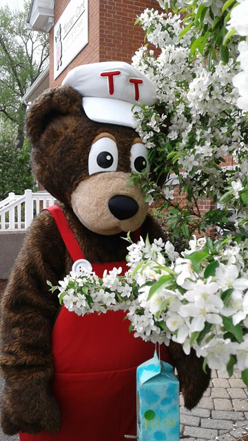 teddy-flowers-
